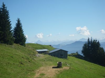 Jocheralm in den Brandenberger Alpen